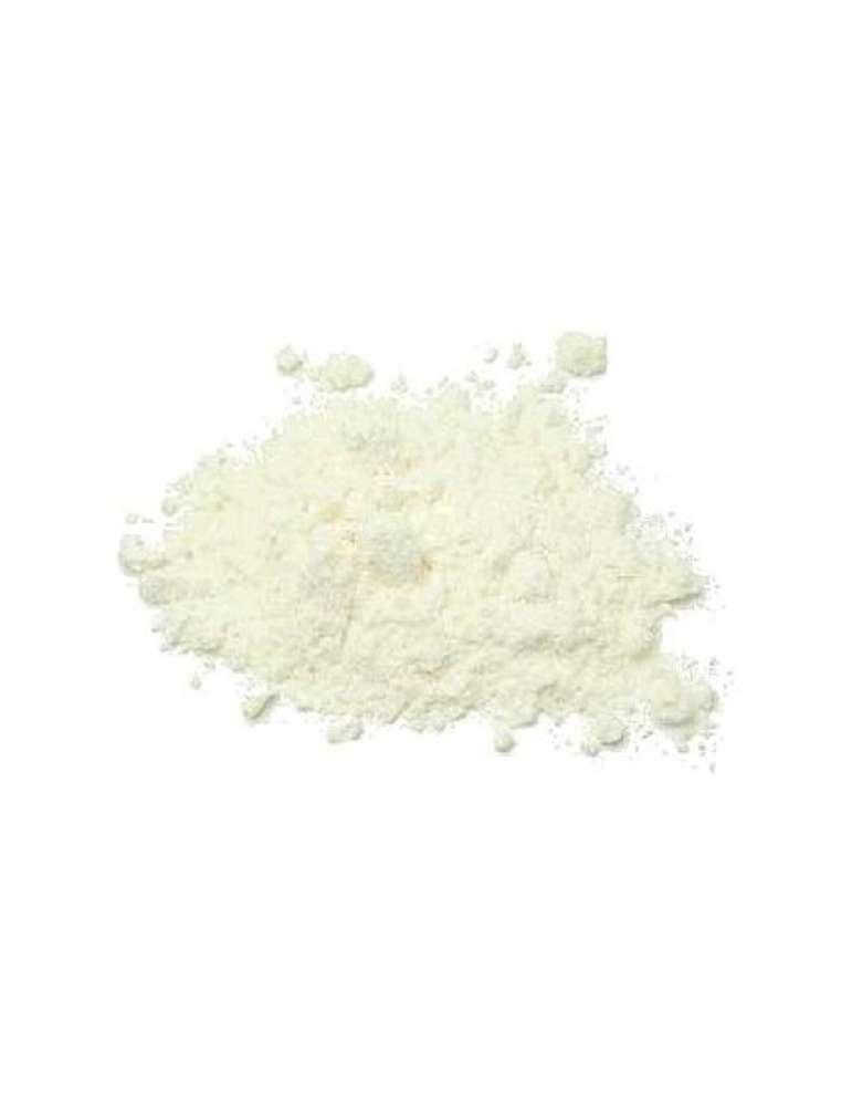 Bolsa de 500 gramos de Lactosa