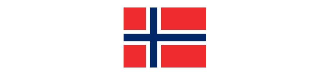 Cerveza Artesanal Noruega